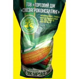 Семена кукурузы Любава 279 МВ, ФАО 270